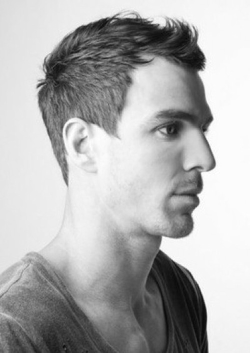 Short Faux Hawk Haircut For Men 2012