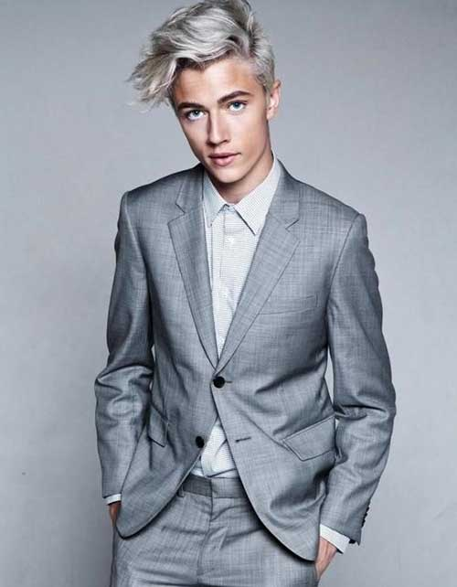 Men Grey Hairstyle Pictures