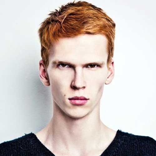 Men Thick Ginger Hair Ideas