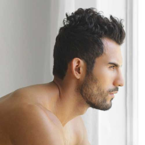 Remarkable Mens Hairstyles For Thick Wavy Hair Mens Hairstyles 2016 Short Hairstyles Gunalazisus