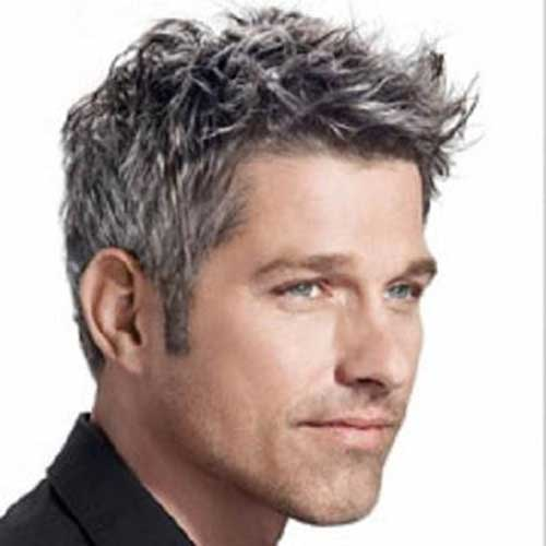 Nice Grey Hairstyles for Men