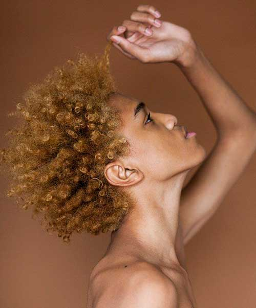 Afro American Hairstyles