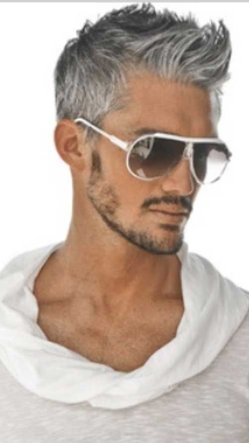 Silver Short Haircuts for Men
