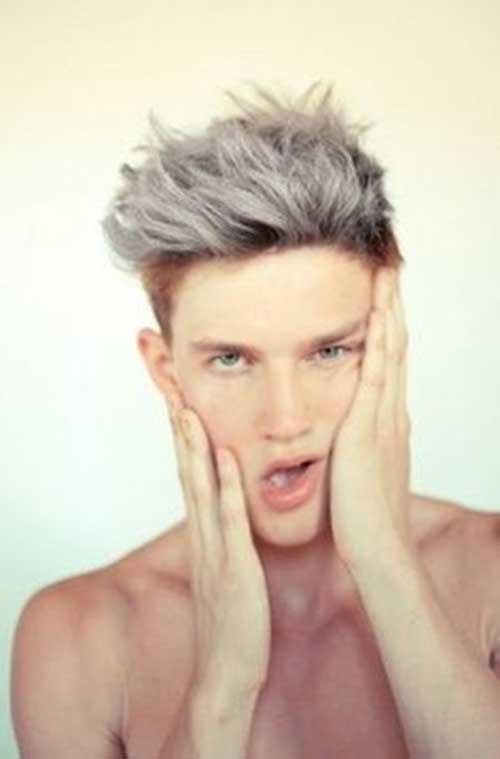 Mens Grey Hair Colour 2014
