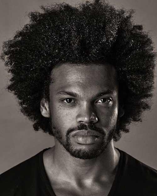 Amazing 20 Best Afro Hairstyles Mens Hairstyles 2016 Short Hairstyles For Black Women Fulllsitofus
