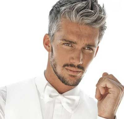 Classic Men's Hairstyles 2013